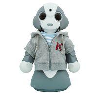 見守り支援ロボット Kibiro(キビロ)
