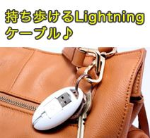LEPLUS Lightning Cable �u�P�[�u�������������A�V�����J�^�`�B�v