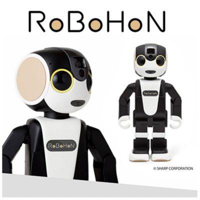 RoBoHoN ロボホンキャリングケース SR-CA03